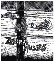 """Z"" is for Zebra Mussels"