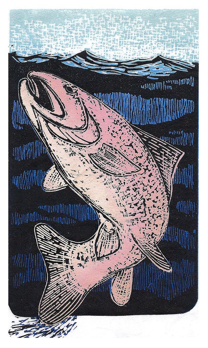 Rising-Trout