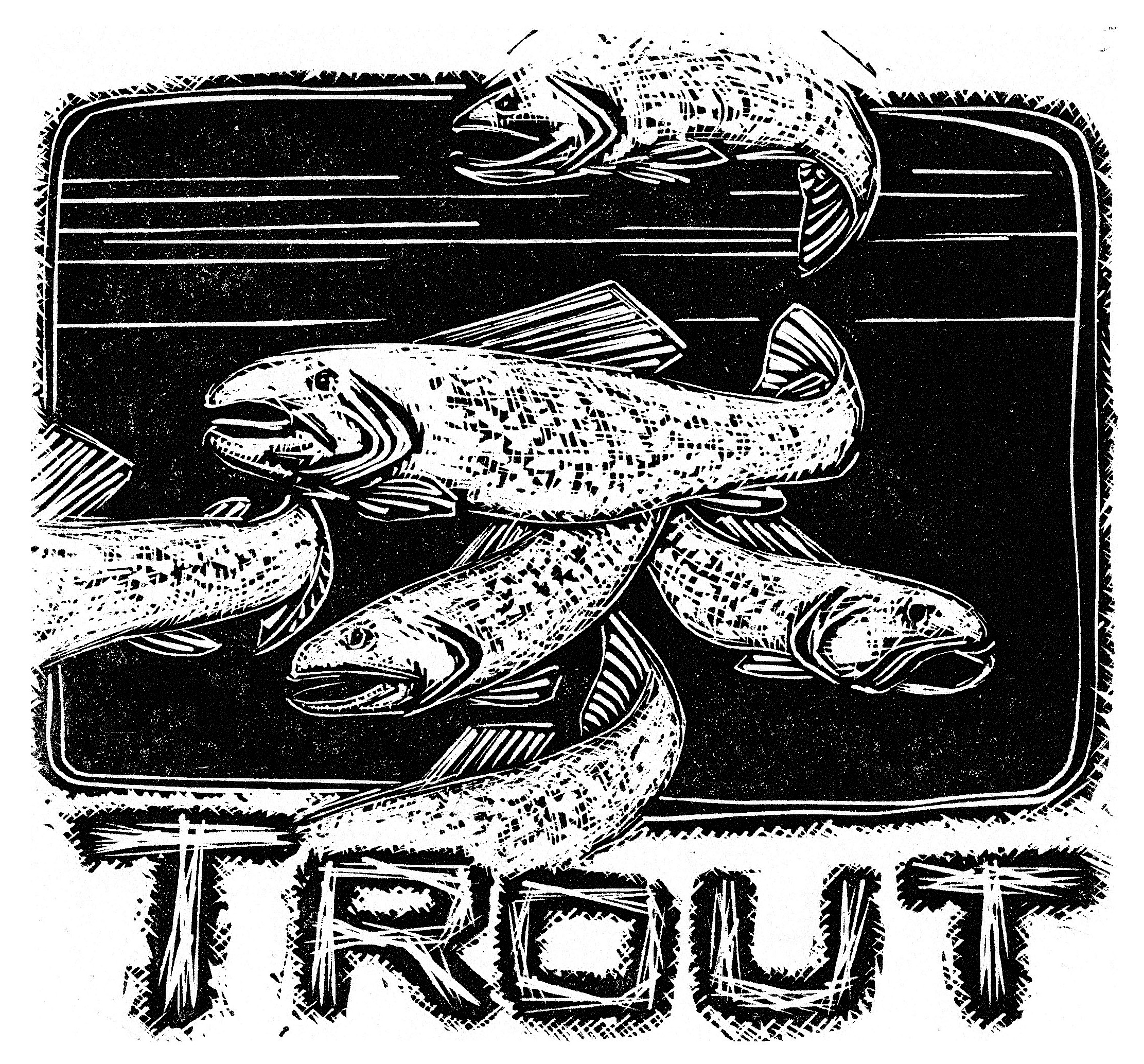 T-is-for-Trout-(from-the-Alphabet-Series)