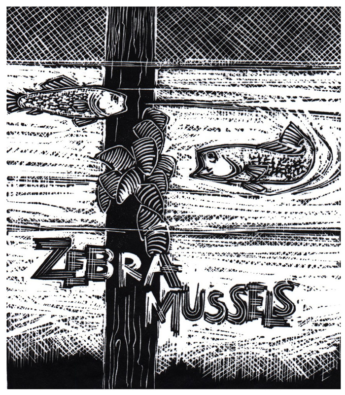 Z-is-for-Zebra-Mussels-(Alphabet-Series)